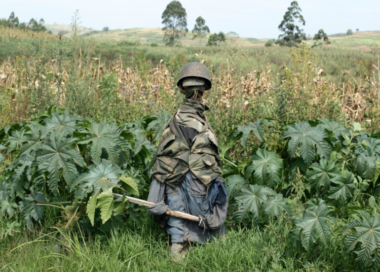 "Northeastern Ituri Province, DRC, February 2020.The likeness of a Congolese soldier stands in a field near the village of Tche in Congo's northeastern Ituri Province in mid-February. With few government forces in the area villagers from the Hema community erected the likeness in the hopes of warding off armed members of the Cooperative for the Development of Congo (CODECO), an armed political-religious sect drawn from the Lendu ethnic group that has been blamed for a wave of killings in the province over the past two years. Conflict between the Lendu, mainly farmers, and the Hema, herders and traders, has a long history in the gold and oil-rich province, with tens of thousands of people killed between 1999 and 2003. Militia attacks have killed at least 444 civilians in Ituri since March and displaced more than 200,000 people since the beginning of the year, according to Human Rights Watch (HRW), which cited United Nations sources. A January UN report said some of the deaths could constitute a ""crime against humanity"". The army launched an offensive in January against militias operating in Ituri as part of a wider offensive launched last October, and announced that CODECO's leader, Justin Ngudjolo, was killed in late March. The group has since split into different factions and continues to kill civilians across the province, according to HRW, which said Congolese security forces fighting the militia have also committed serious abuses, including extrajudicial executions. © Dieudonne Dirole for Fondation Carmignac"