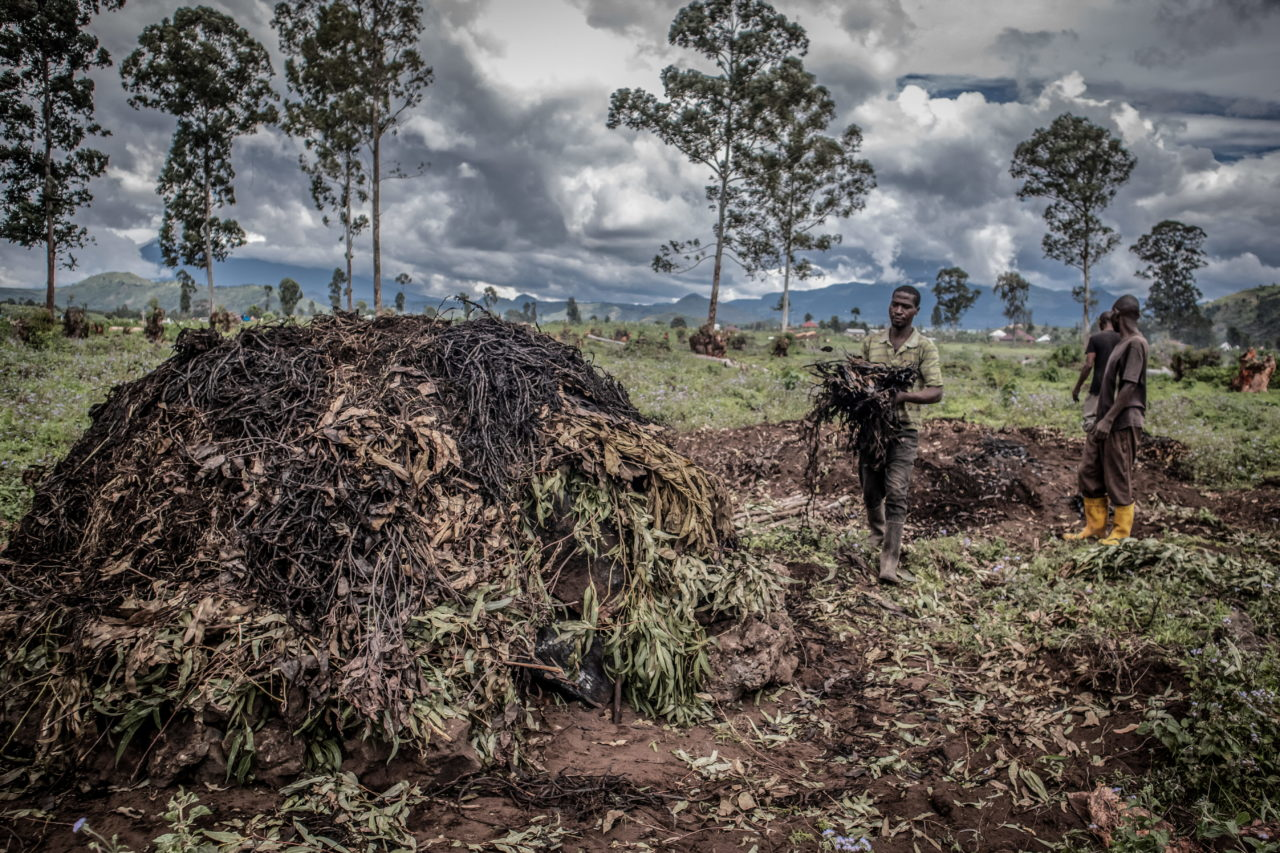 Virunga National Park, DRC, November 2020. A father and son prepare a kiln to make charcoal on a swathe of deforested land near the village of Rusayo on the edge of Virunga National Park just north of the eastern Congolese city of Goma. © Guerchom Ndebo for Fondation Carmignac