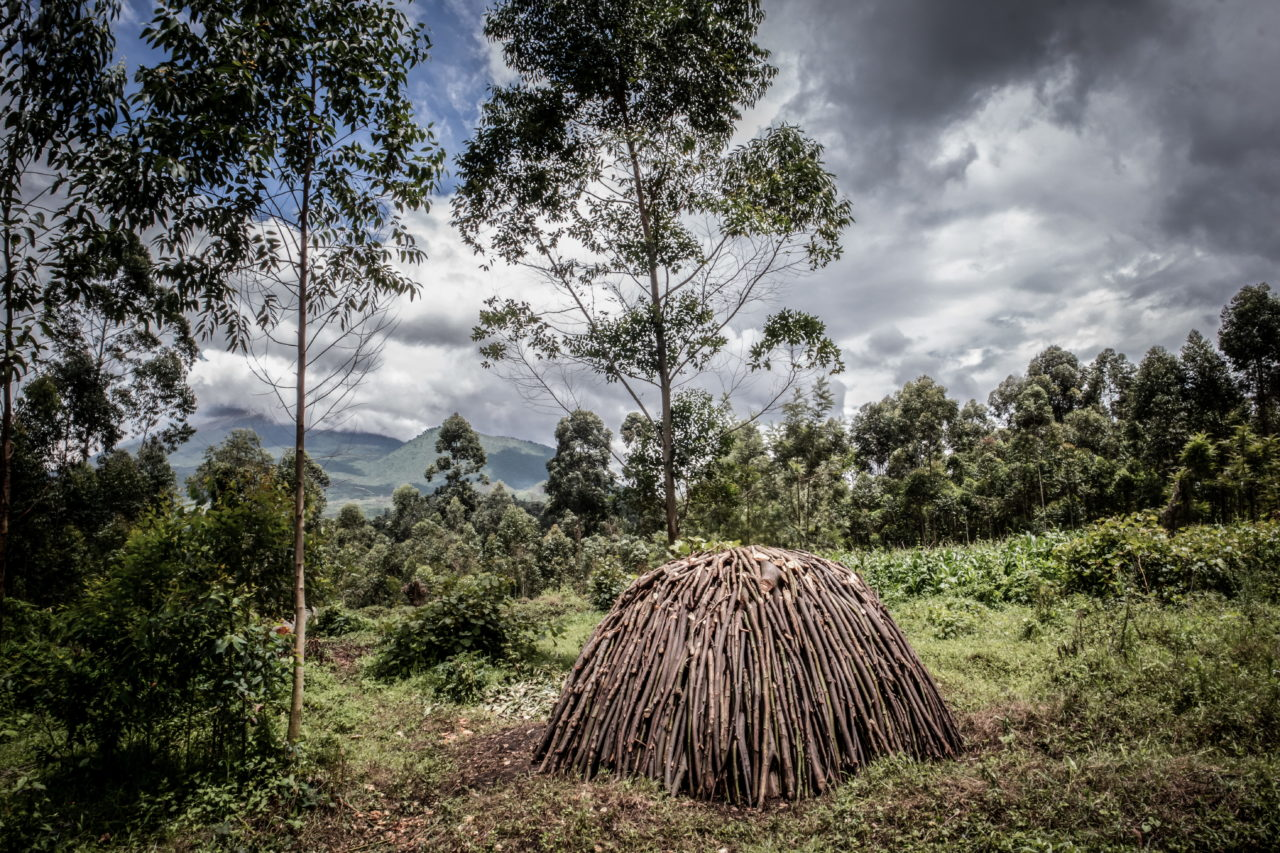 Virunga National Park, DRC, November 2020. A kiln used to make charcoal stands on a swathe of deforested land on the edge of Virunga National Park just north of the eastern Congolese city of Goma. © Guerchom Ndebo for Fondation Carmignac